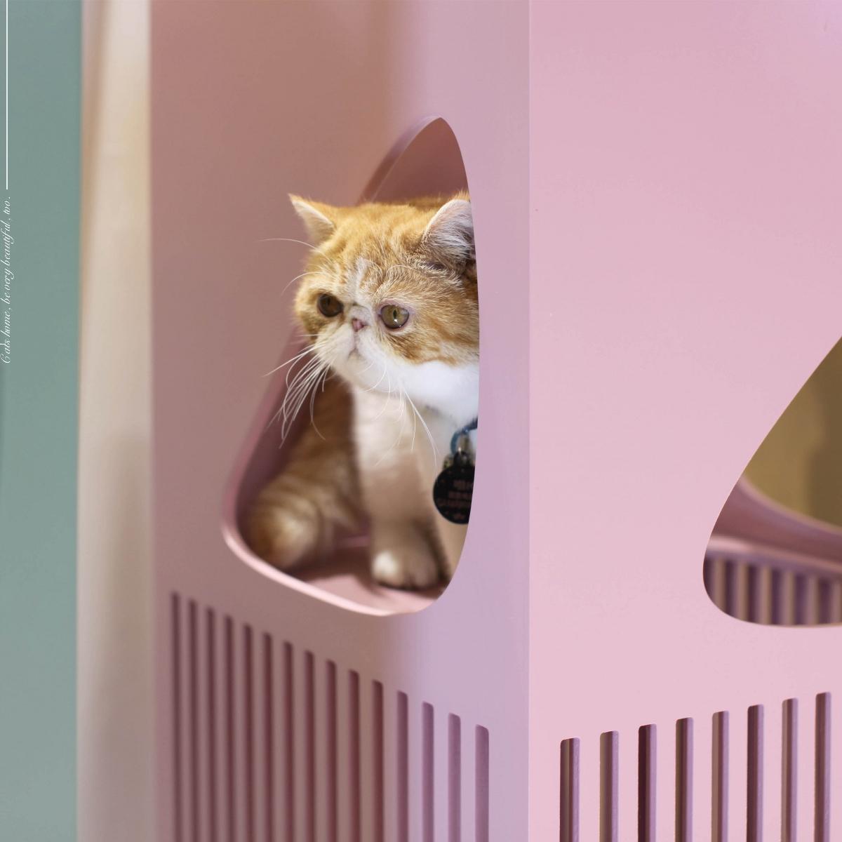 这是你见过最美的 猫爬架