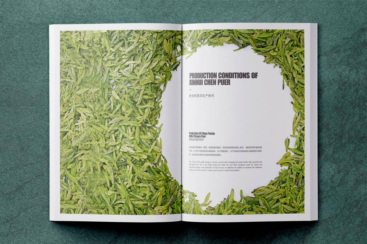 新会普洱养生手册 | 茶叶画册提案