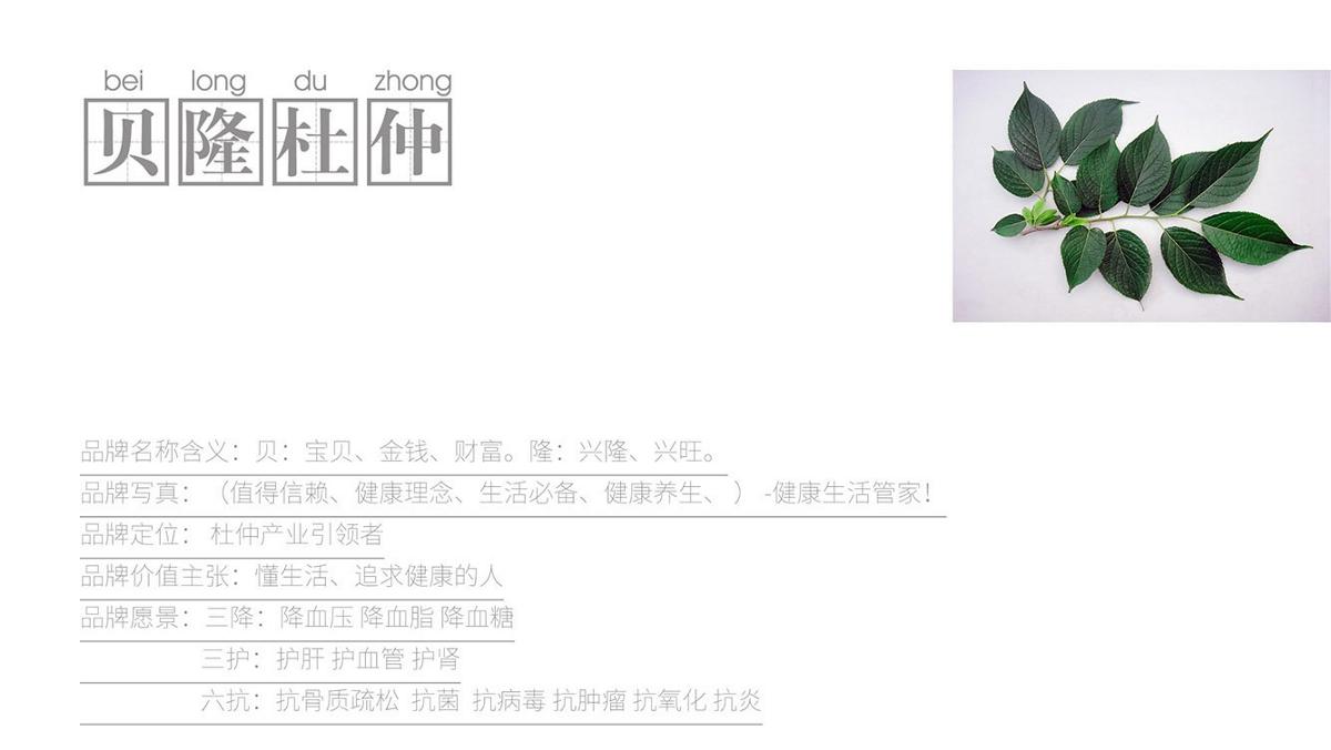 贝隆杜仲品牌包装策划设计-山东太歌文化创意