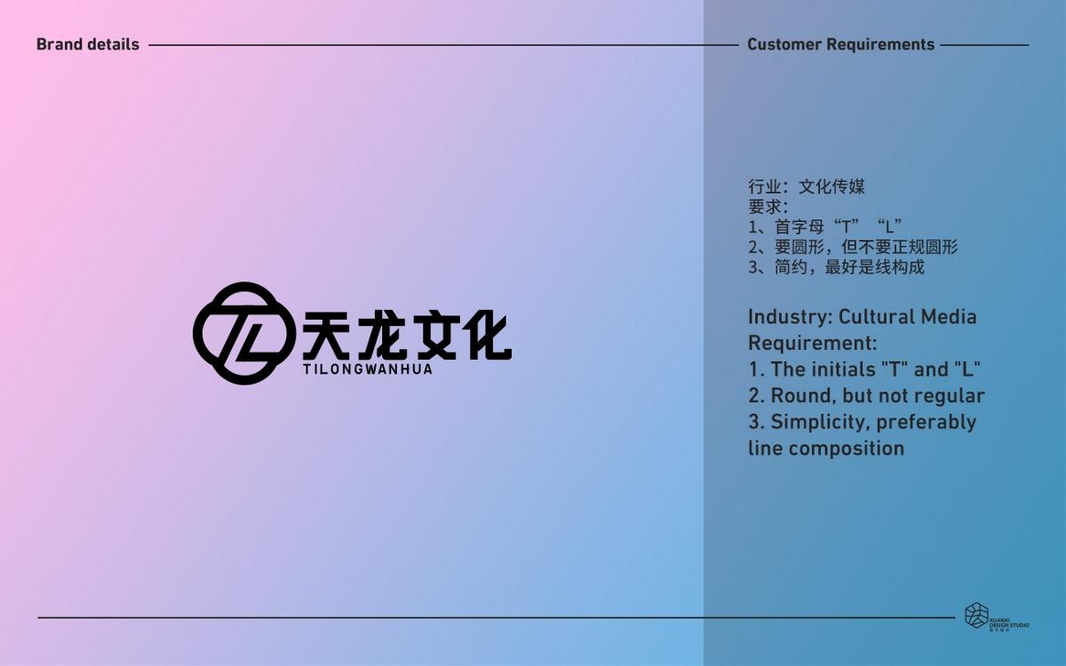 天龙文化品牌vi设计