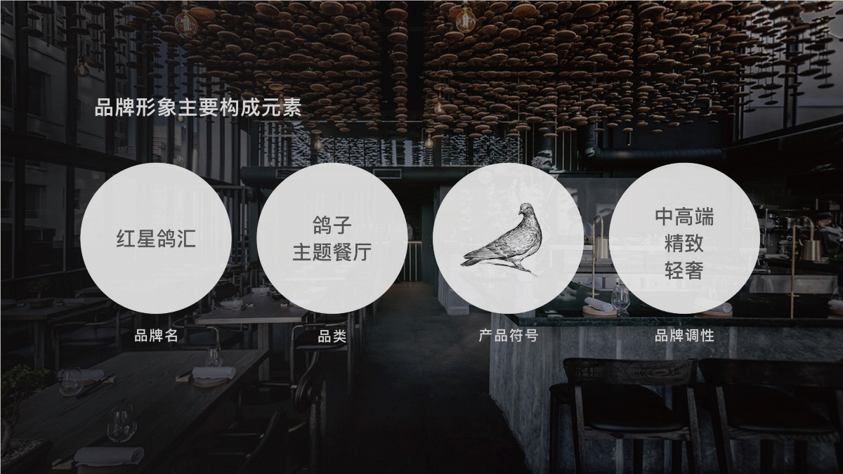 红星鸽汇— 品牌设计