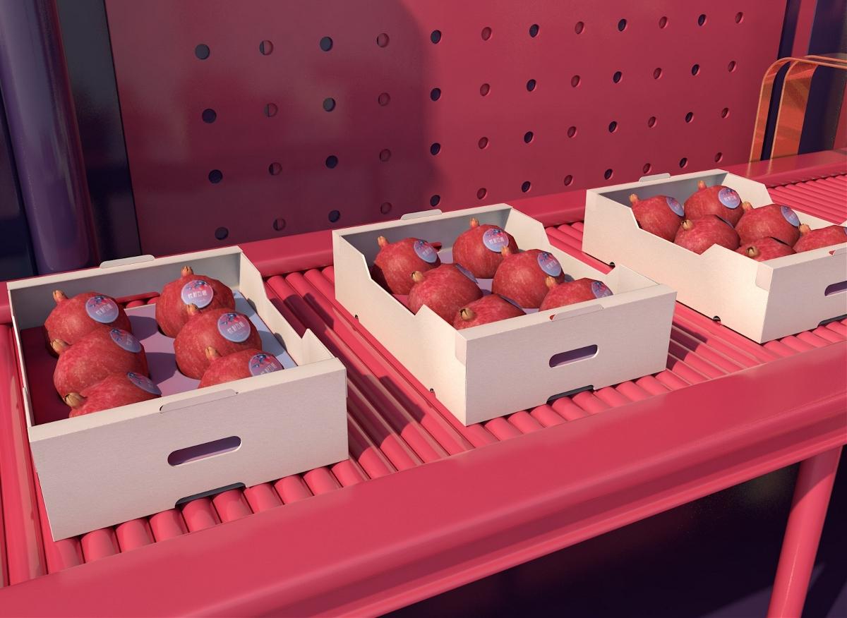 青柚设计 x 软籽石榴 包装设计