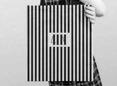 4IN头发问题解决中心品牌要素创建与应用指南