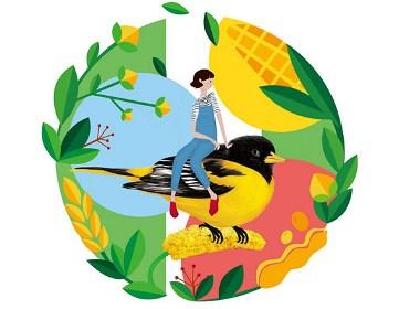 五谷雜糧系列包裝設計分享