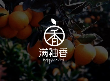 桔子柚子橙子水果企业店铺公司品牌特产LOGO标志字体商标设计