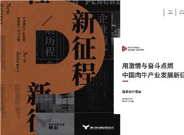 鹏和宣传册设计