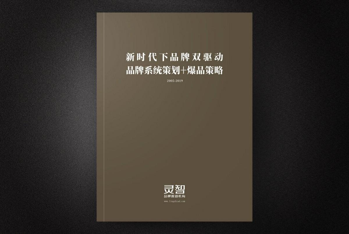灵智画册 十五年作品集
