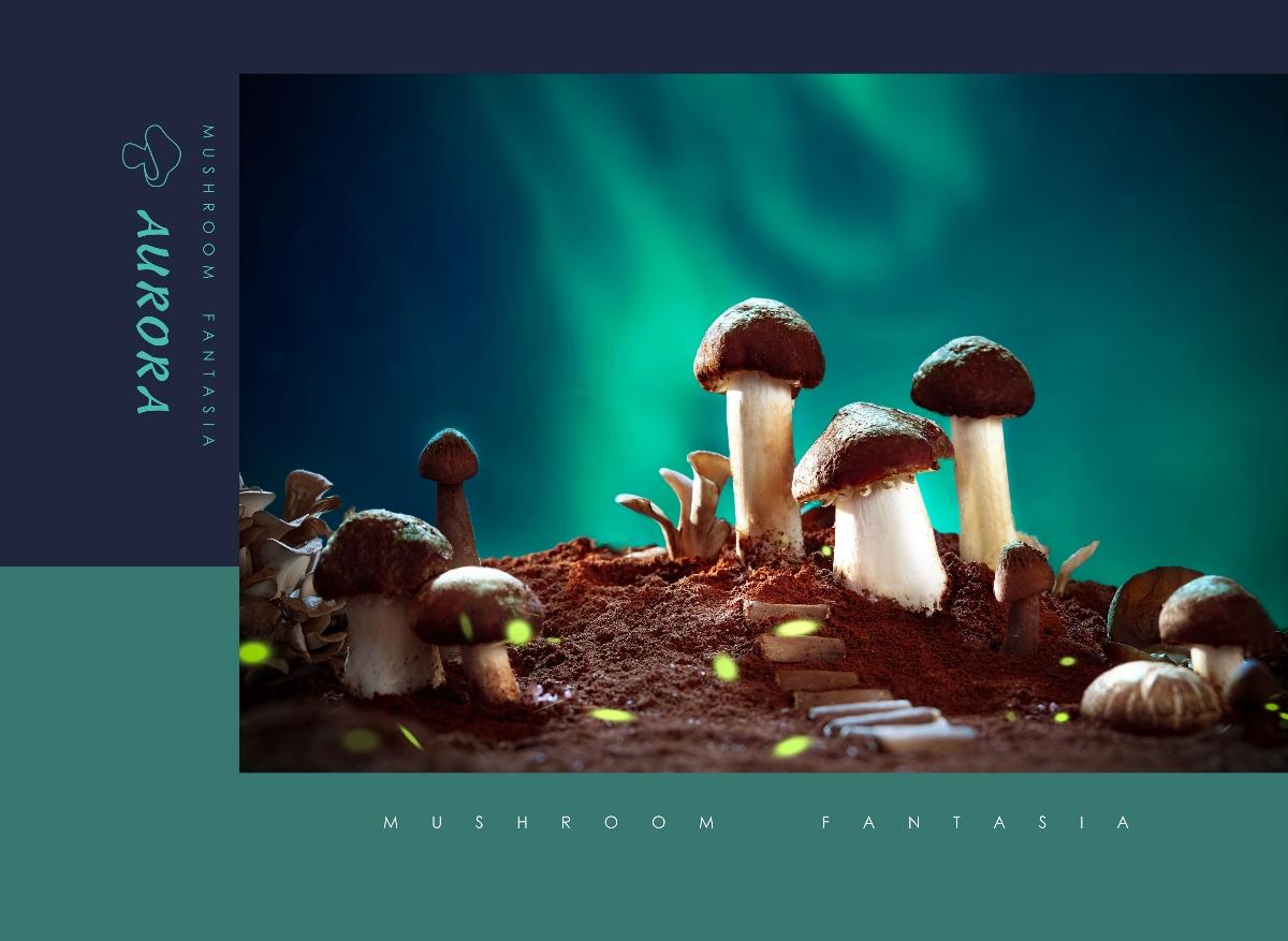 蘑菇幻想曲 #IN LIGHT#