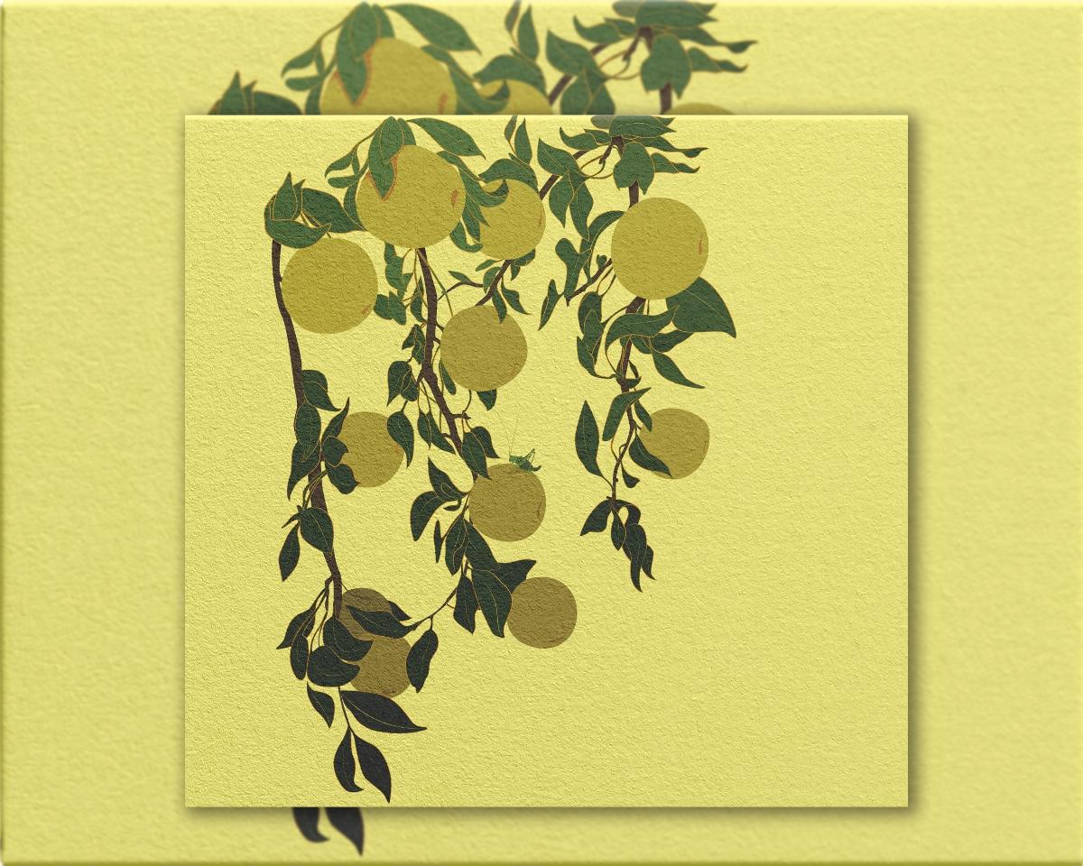 一砚梨包装