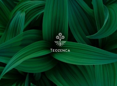 Teozenca品牌视觉形象设计