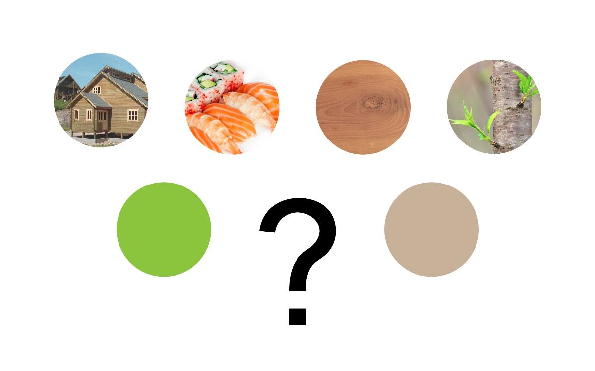 木屋寿司品牌形象设计Chalet Sushi Brand Design