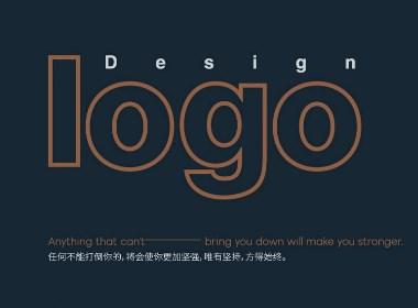 Logo summary-标志总结