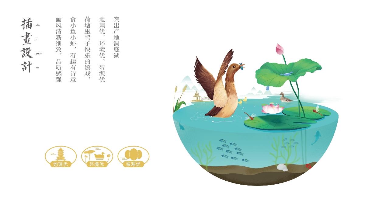 咸鸭蛋包装设计/神丹鸭蛋/洞庭湖鸭蛋/观复作品