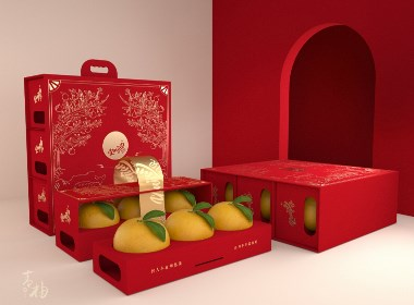 「 青柚原創 」包豪斯簡約工藝風 水果柚子品牌包裝設計