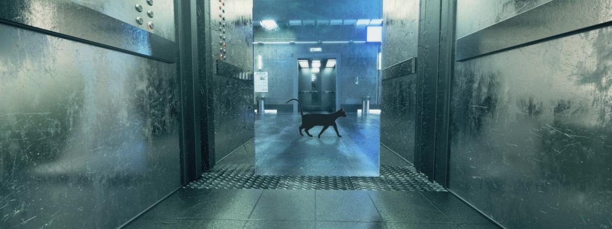 电梯骚猫(骚就对了)骚猫5镜头3