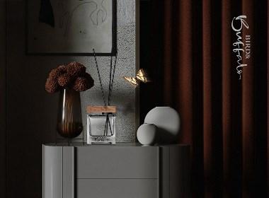 bird&buffalo高端品牌设计及藤条香薰产品包装设计方案