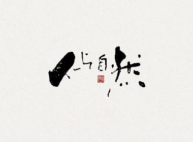 飞凡书写字体设计第19篇