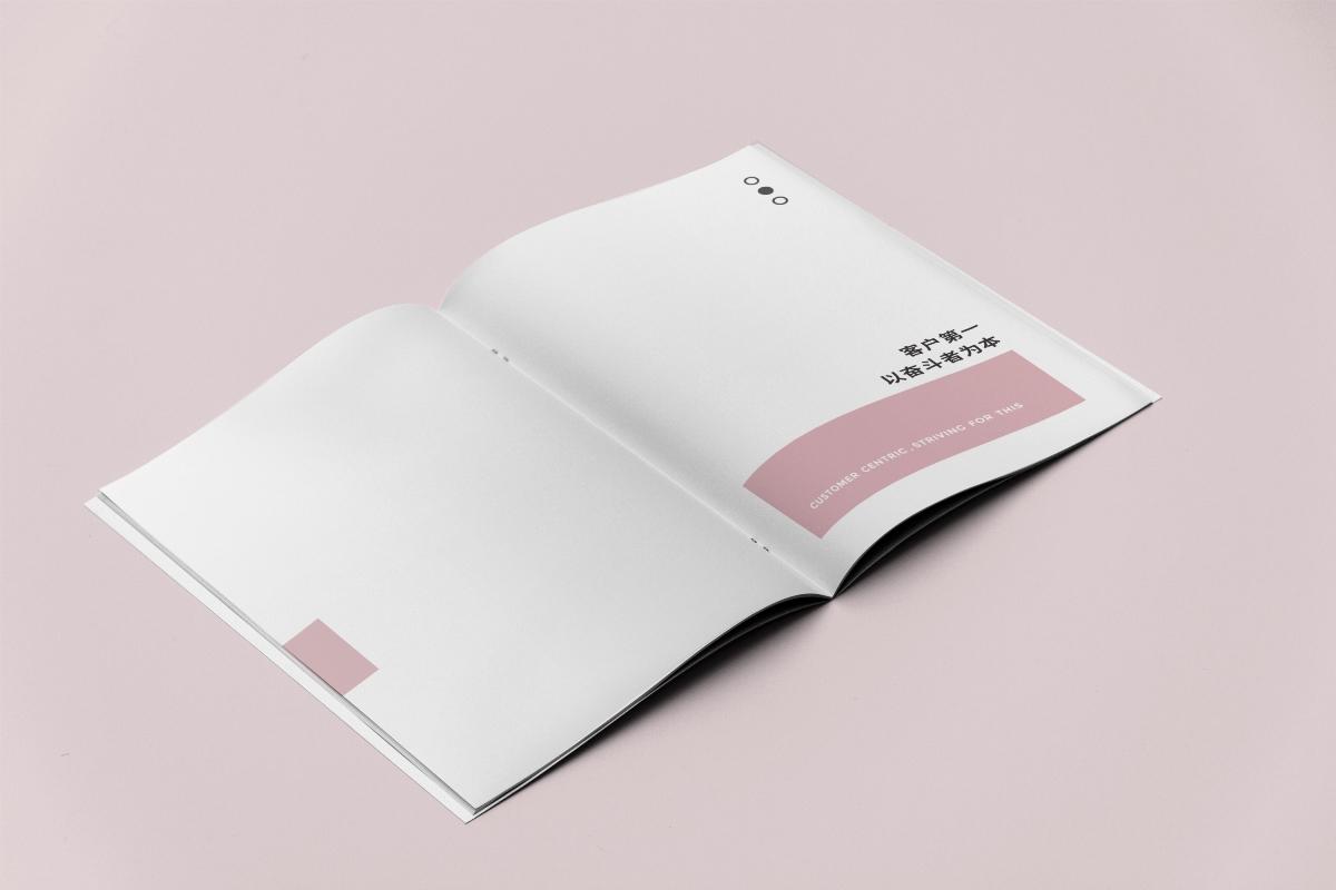 画册 化妆品妆护用品企业画册
