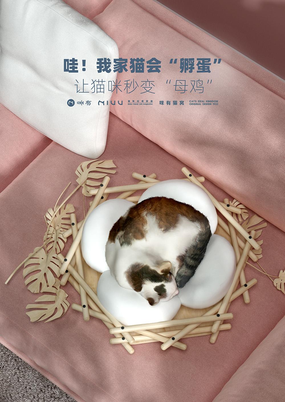 """如何让一只猫变成一只""""鸡""""??太可爱了吧!"""