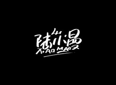 雨田手写(林徽因和她的时代)
