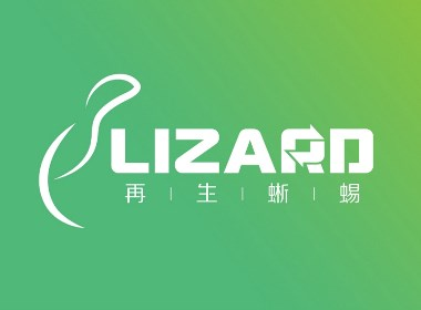 定见案例 | 再生蜥蜴 让产品特性和品牌格调可视化