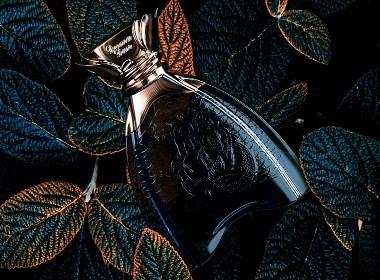 德尔玛丹香水瓶型造型设计