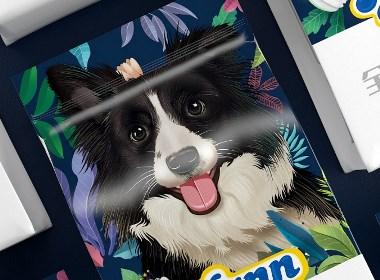 漢優犬糧—徐桂亮品牌設計