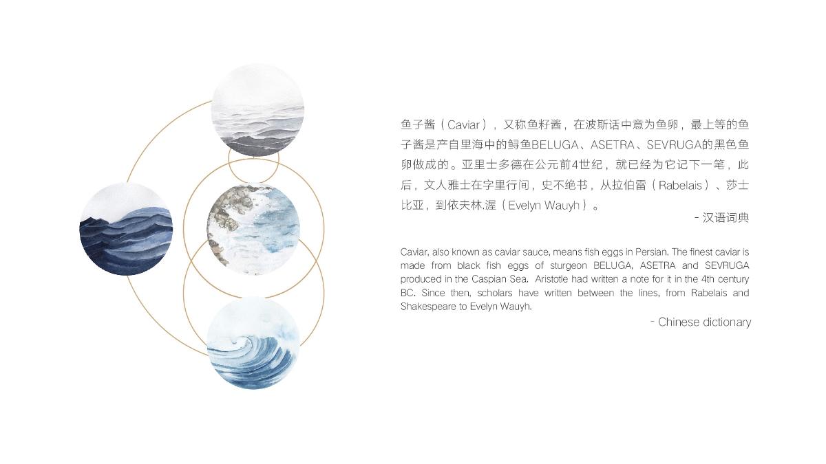 CHM x 小王-游走的鱼子酱包装