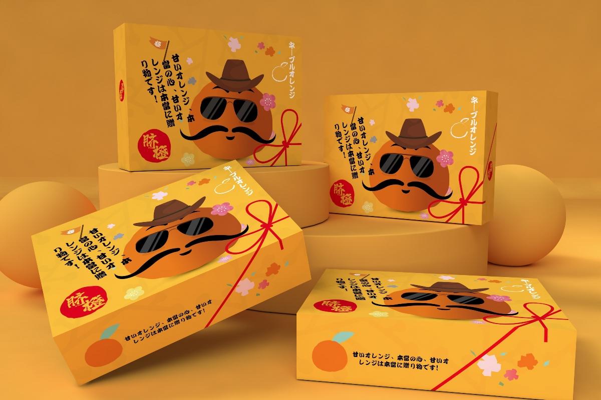 橙子包装盒、水果通用包装盒、超市食品节日礼盒唯美