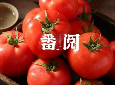 番阅番茄品牌创建全案策划品牌设计