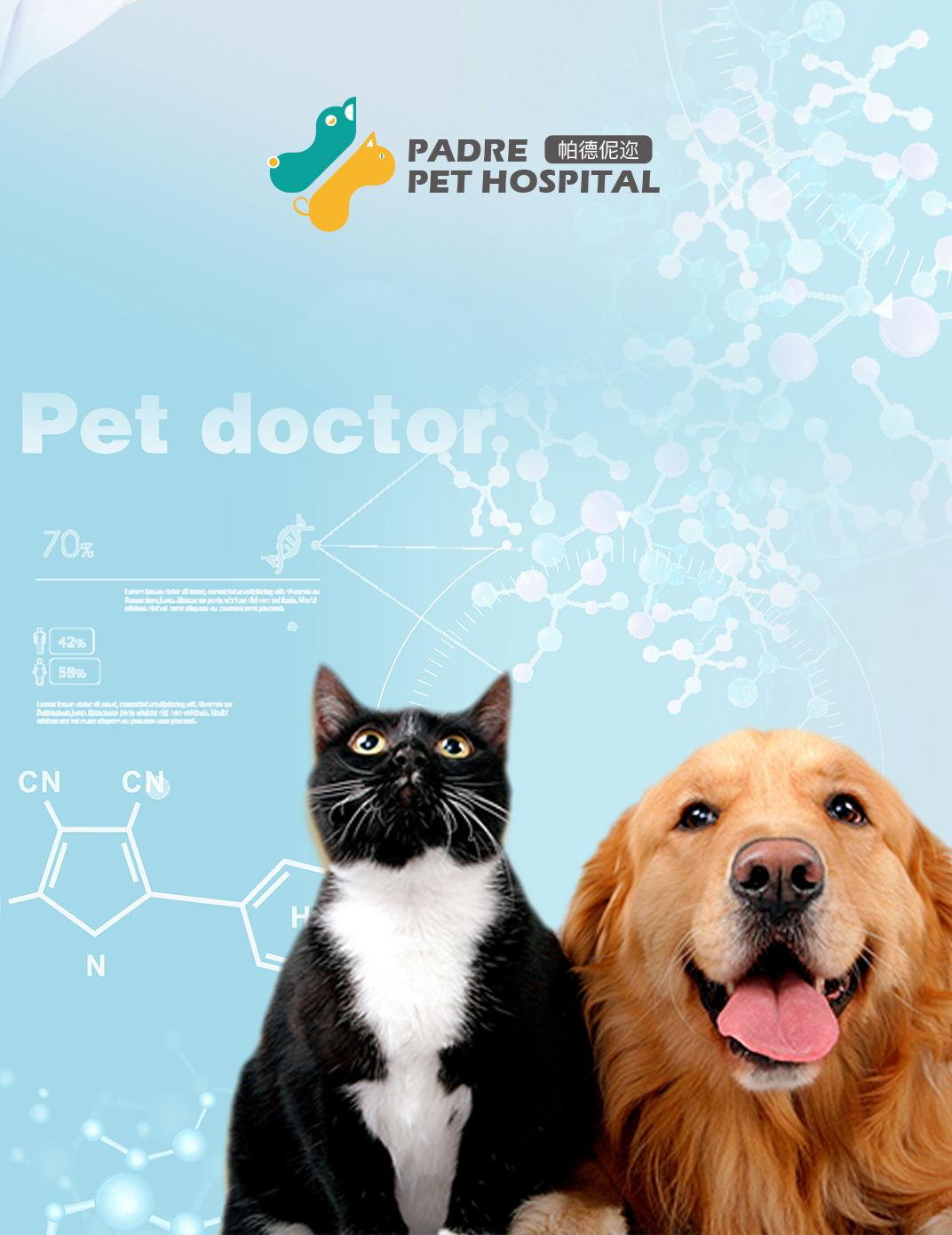 【logo设计】帕德伲迩宠物医院 #追赤视觉