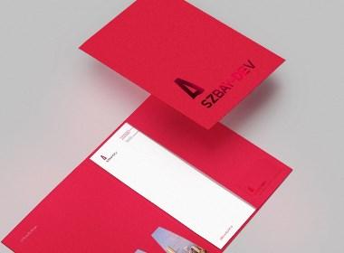 品牌全案设计项目-深圳湾发展
