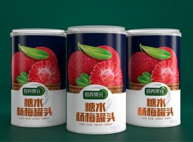 营养果元水果罐头—徐桂亮品牌设计