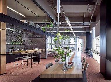 开敞式办公空间,这样的工作环境爱了