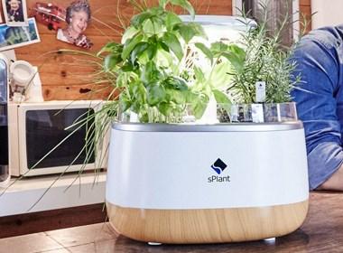 科技催生植物更长情的陪伴 丨 samrt智能花箱