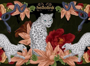 击石拊石 百兽率舞 | hellolink红茶礼盒包装设计