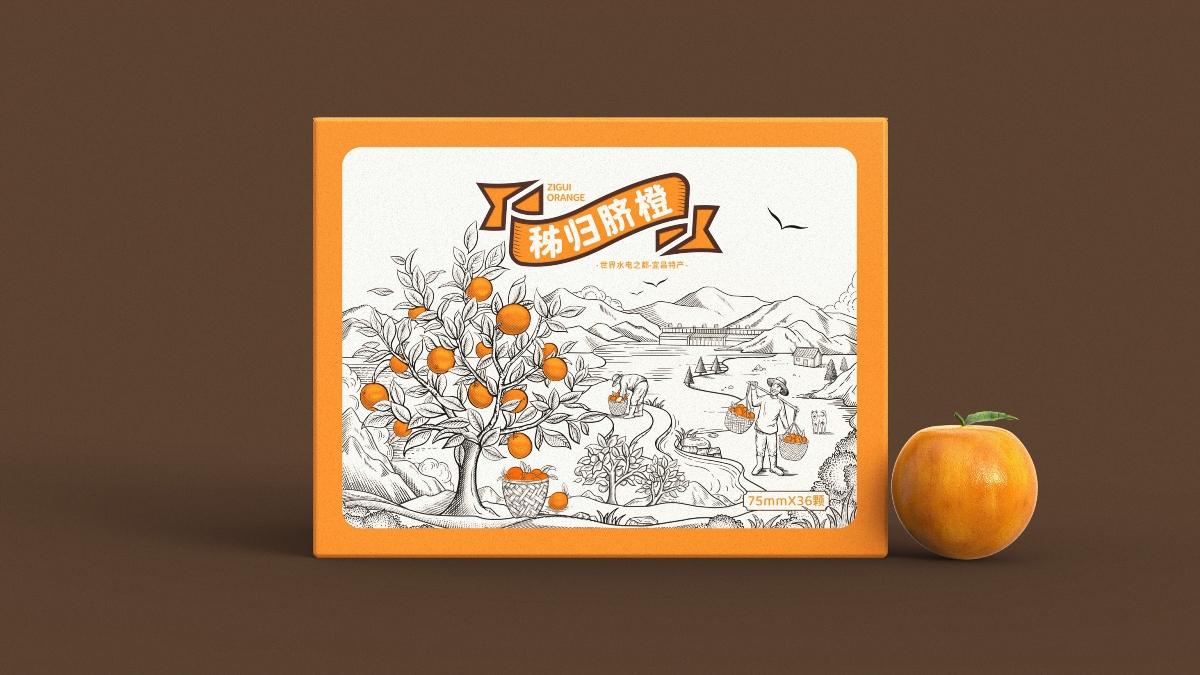 秭归脐橙包装设计|世界水电之都宜昌特产