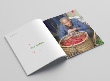 集市画册版式设计