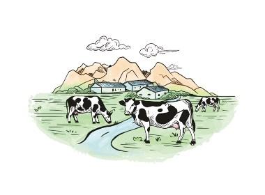 六鹿設計x牛寶寶乳業
