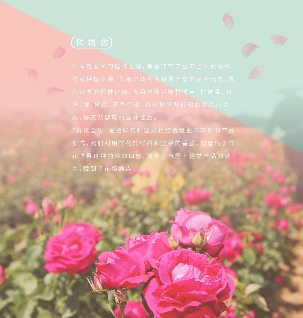 鲜花坚果礼盒
