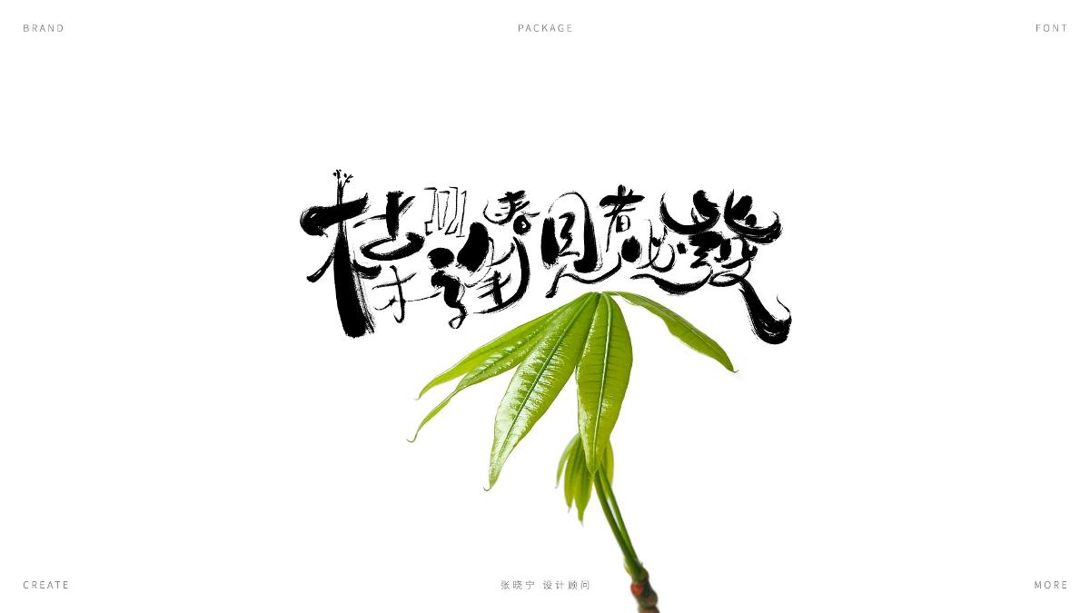 手写字体设计合集02 X 张晓宁