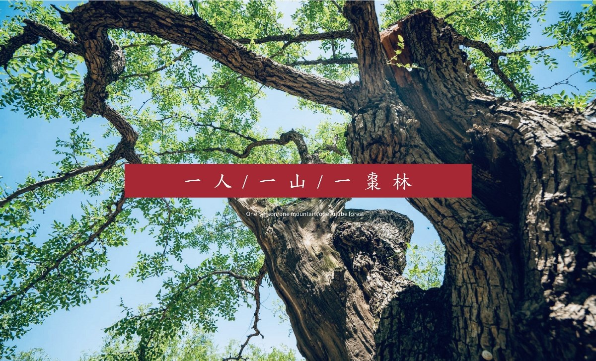 【LOGO/VI设计】三俩枣 红枣食品零食农产品行业标志VI