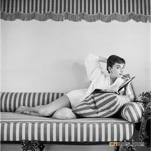 时尚圈传奇美女赫本 揭秘从未公开的生活照(上)插图(1)