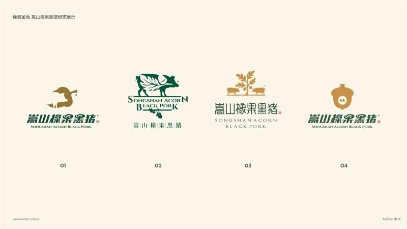 橡果黑猪Logo设计 (3).jpg