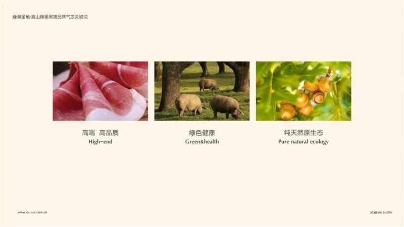 橡果黑猪品牌设计.jpg
