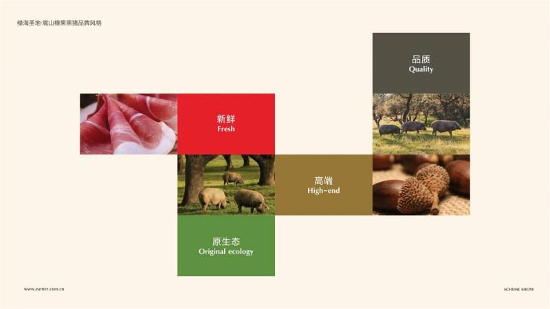 橡果黑猪品牌设计 (2).jpg