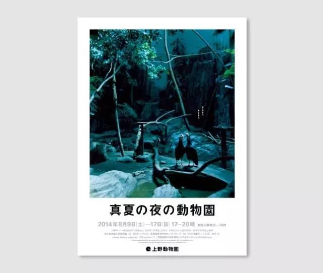 夏夜动物园1.jpg