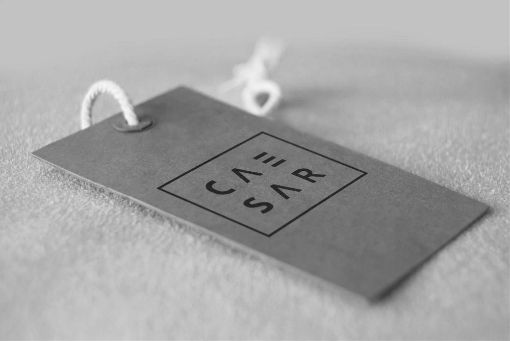 CAESAR男装品牌设计.jpeg