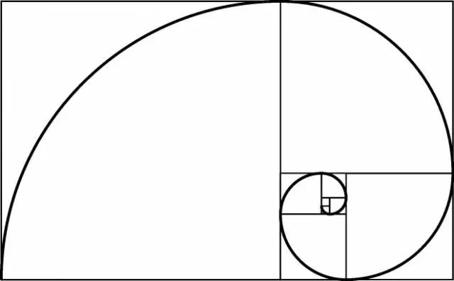 设计黄金比例 (14).jpg
