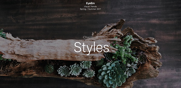 风格与类型.jpg